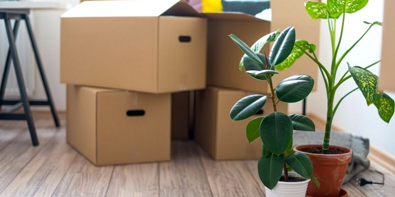 Moving Made Simple with Porchlight Move Management